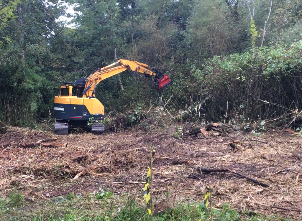 Picture of machine clearing bamboo