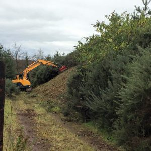 Picture of machine clearing gorse from steep bank